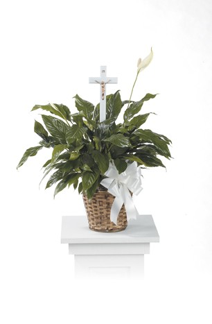 Natural Basket Peace Lily With Cross Insert