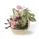 Pink Freshcut Dishgarden Basket
